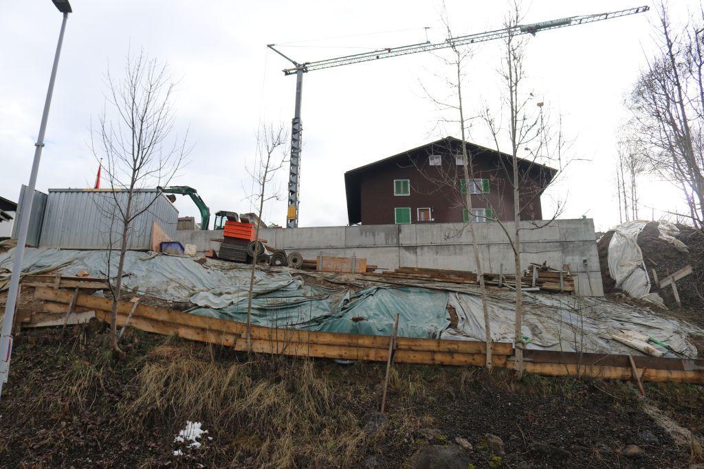 Neubau EFH, Allmigstrasse, Oberiberg (18)